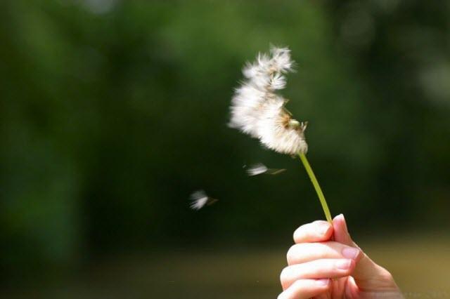 So với vĩnh cửu thì cuộc đời mỗi người chỉ là một khoảnh khắc.