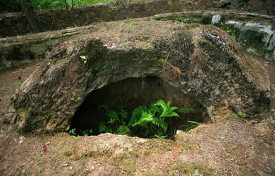 Lăng Ba Vành, ẩn số về ngôi mộ cổ của Vua Quang Trung