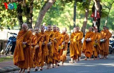 Từng bước chân an lạc, Chùm ảnh về các nhà sư đi khất thực ở Huế