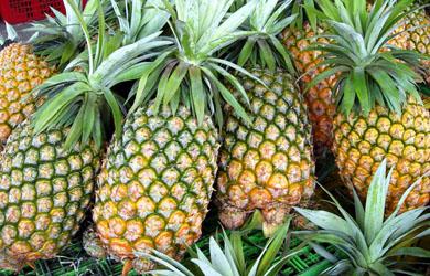 Những tác dụng từ quả dứa, còn gọi là trái thơm, trái khóm
