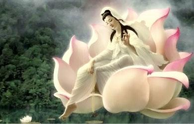Xin nguyện học theo hạnh nguyện Bồ Tát Quán Thế Âm